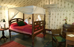 Chanpara Bedroom
